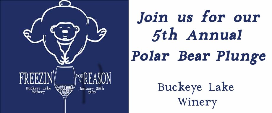 5th Annual Polar Bear Plunge